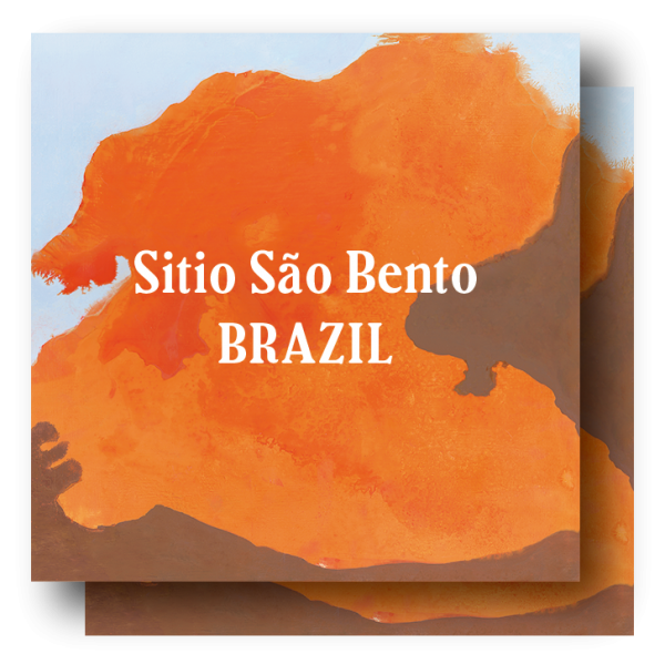 <img class='new_mark_img1' src='https://img.shop-pro.jp/img/new/icons5.gif' style='border:none;display:inline;margin:0px;padding:0px;width:auto;' />Brazil Sitio São Bento 400g (200g×2)