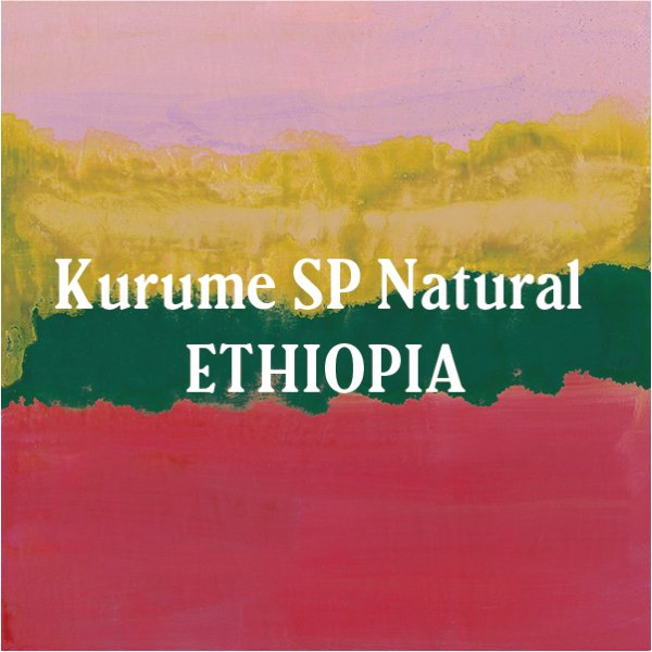 <img class='new_mark_img1' src='https://img.shop-pro.jp/img/new/icons5.gif' style='border:none;display:inline;margin:0px;padding:0px;width:auto;' />Ethiopia KURUME Natural -Special Preparation 200g