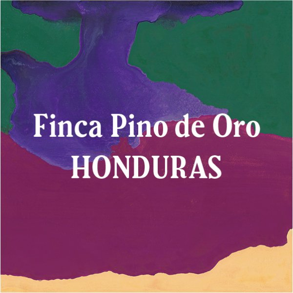 <img class='new_mark_img1' src='https://img.shop-pro.jp/img/new/icons29.gif' style='border:none;display:inline;margin:0px;padding:0px;width:auto;' />Honduras Finca Pino de Oro 200g