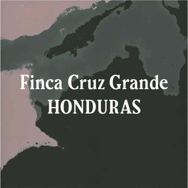 <img class='new_mark_img1' src='https://img.shop-pro.jp/img/new/icons29.gif' style='border:none;display:inline;margin:0px;padding:0px;width:auto;' />Honduras Finca Cruz Grande Dark Roast 200g