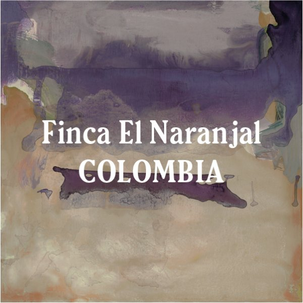 <img class='new_mark_img1' src='https://img.shop-pro.jp/img/new/icons29.gif' style='border:none;display:inline;margin:0px;padding:0px;width:auto;' />Colombia Finca El Naranjal