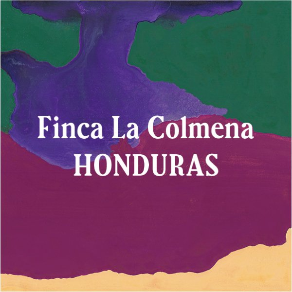 <img class='new_mark_img1' src='https://img.shop-pro.jp/img/new/icons5.gif' style='border:none;display:inline;margin:0px;padding:0px;width:auto;' />Honduras Finca La Colmena 200g