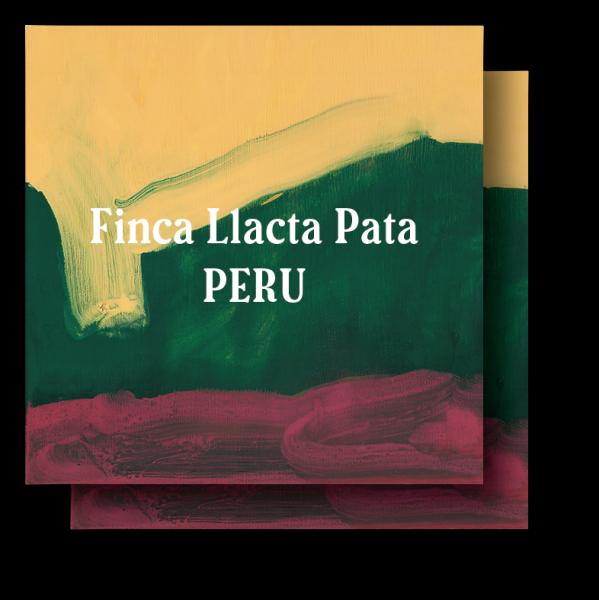 <img class='new_mark_img1' src='https://img.shop-pro.jp/img/new/icons29.gif' style='border:none;display:inline;margin:0px;padding:0px;width:auto;' />Perú  Finca Llacta Pata