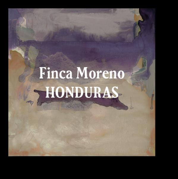 <img class='new_mark_img1' src='https://img.shop-pro.jp/img/new/icons5.gif' style='border:none;display:inline;margin:0px;padding:0px;width:auto;' />Honduras Finca Moreno 200g