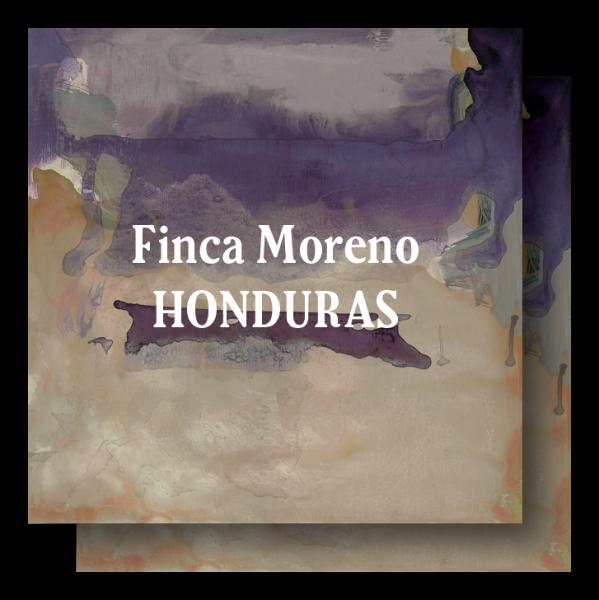 <img class='new_mark_img1' src='https://img.shop-pro.jp/img/new/icons5.gif' style='border:none;display:inline;margin:0px;padding:0px;width:auto;' />Honduras Finca Moreno 400g (200g×2)