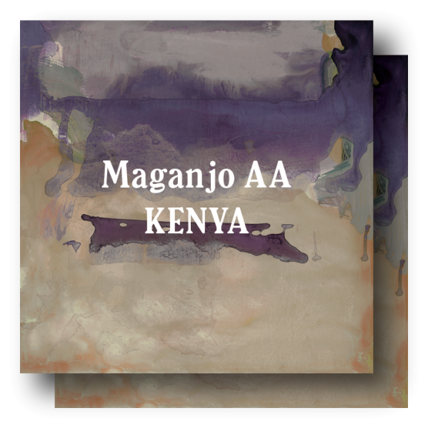 <img class='new_mark_img1' src='https://img.shop-pro.jp/img/new/icons5.gif' style='border:none;display:inline;margin:0px;padding:0px;width:auto;' />Kenya Maganjo AA 400g (200g×2)