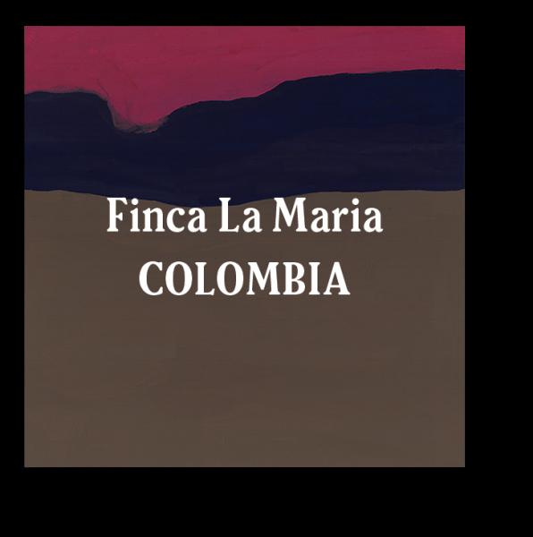 <img class='new_mark_img1' src='https://img.shop-pro.jp/img/new/icons29.gif' style='border:none;display:inline;margin:0px;padding:0px;width:auto;' />Colombia Finca La Maria Dark Roast 200g