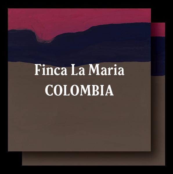 <img class='new_mark_img1' src='https://img.shop-pro.jp/img/new/icons29.gif' style='border:none;display:inline;margin:0px;padding:0px;width:auto;' />Colombia Finca La Maria Dark Roast 400g (200g×2)