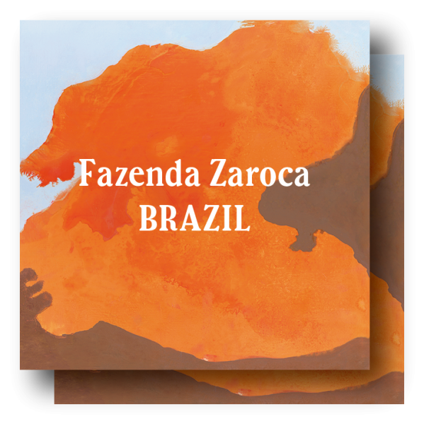 <img class='new_mark_img1' src='https://img.shop-pro.jp/img/new/icons5.gif' style='border:none;display:inline;margin:0px;padding:0px;width:auto;' />Brazil Taste of Harvest Fazenda Zaroca 400g (200g×2)