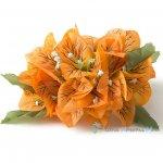 フラダンス髪飾り ブーゲンビリア オレンジ