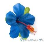 フラダンス 髪飾り ハイビスカス 1P ブルー