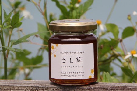 生ハチミツ FROMO養蜂園【タチアワユキセンダングサ】2020