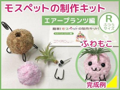 【制作キット】エアープランツ(R)ふわもこ毛糸