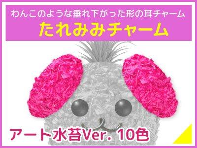たれみみチャーム(アート水苔)