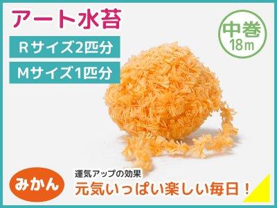 アート水苔中巻(18m)みかん(橙)