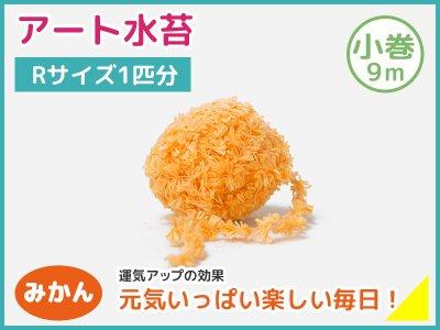 アート水苔小巻(9m)みかん(橙)