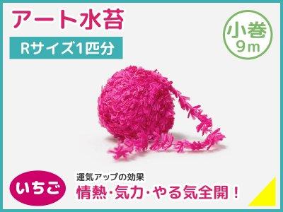 アート水苔小巻(9m)いちご(赤)