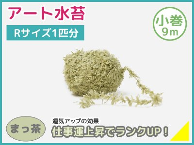 アート水苔小巻(9m)まっ茶(モスグリーン)