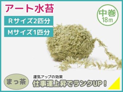 アート水苔中巻(18m)まっ茶(モスグリーン)