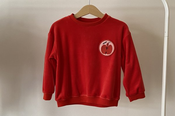 <img class='new_mark_img1' src='https://img.shop-pro.jp/img/new/icons14.gif' style='border:none;display:inline;margin:0px;padding:0px;width:auto;' />21AW afyny Patches Velvet Sweatshirt Red