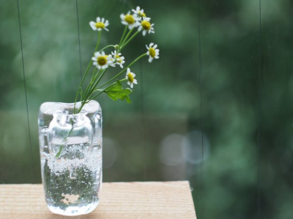 【再入荷】ガラスのフラワーベース