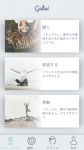 <img class='new_mark_img1' src='https://img.shop-pro.jp/img/new/icons12.gif' style='border:none;display:inline;margin:0px;padding:0px;width:auto;' />●Neeuro社製 瞑想リラクゼーション・アプリ Galini追加プレミアムアカウント