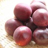 奄美パッションフルーツ | 1.0kg~