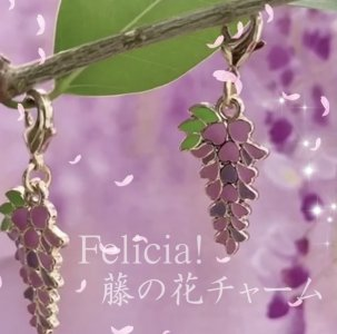 藤の花・チャーム