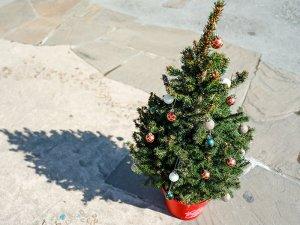 ミニクリスマスツリー 「リトルサンタ」