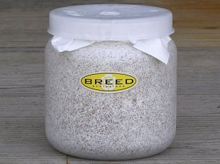 BREED 1500ml 菌糸ビン(2次発菌・手詰め)単品 好評販売感謝価格