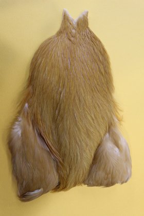 4B's Rooster Cape/Medium Ginger