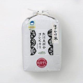 元年産天日干し特別栽培米コシヒカリ5kg