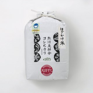 新米予約受付中 令和3年産 数量限定 天日干し 特別栽培米 魚沼産コシヒカリ 精米 5kg×1袋