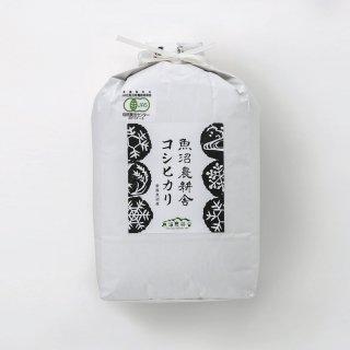 新米受付中 令和3年産 数量限定 JAS有機認証米 魚沼産コシヒカリ 精米5kg×1袋