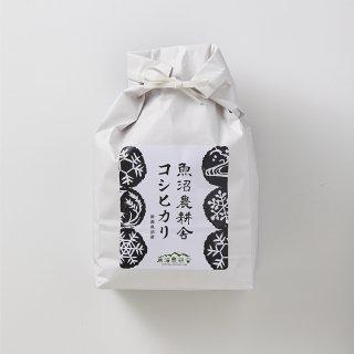 新米予約受付中 令和3年産 魚沼産コシヒカリ 精米 3kg×1袋