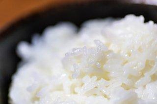 新米予約受付中 令和3年産 特別栽培米 魚沼産コシヒカリ 精米 10kg (5kg×2袋)