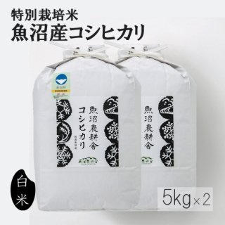 新米予約受付中 令和3年産 定期便なら5%off 魚沼産コシヒカリ 特別栽培米 精米 10kg (5kg×2袋)