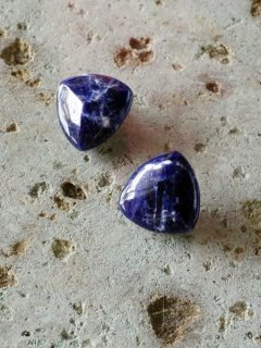 Sodalite earrings(BL)