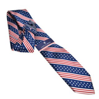 LAND of LIBERTY TIE