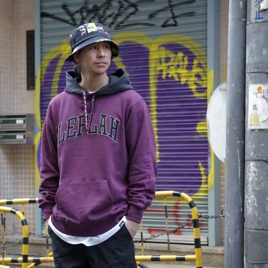 <img class='new_mark_img1' src='https://img.shop-pro.jp/img/new/icons1.gif' style='border:none;display:inline;margin:0px;padding:0px;width:auto;' />【LEFLAH】bi-color arch logo parka(PPL)