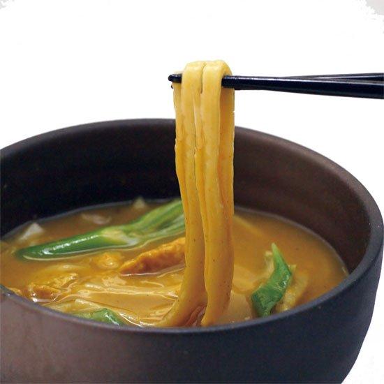 【冷凍】生湯葉入り 和のカリーうどん1食入り