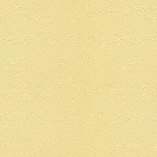 WVC619 東リ 壁紙/クロス 住まいの壁紙