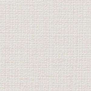 FE-6551 サンゲツ 壁紙/クロス