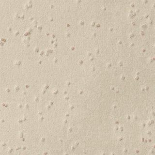 【のり無し】 SGB-2022 サンゲツ 壁紙/クロス
