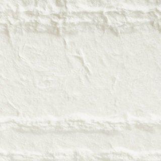 【のり無し】 SGB-2031 サンゲツ 壁紙/クロス