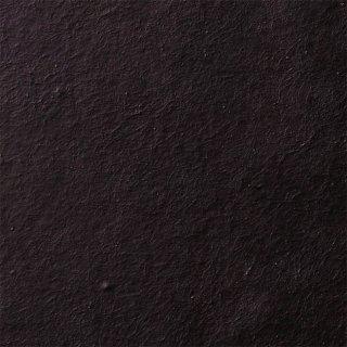 【のり無し】 SGB-2039(旧)SGB-114 サンゲツ 壁紙/クロス
