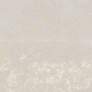 【のり無し】 SGB-2045(旧)SGB-146 サンゲツ 壁紙/クロス