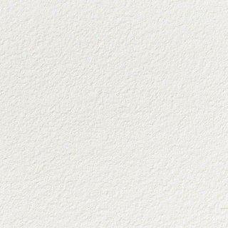 【のり無し】 SP-2827 サンゲツ 壁紙/クロス