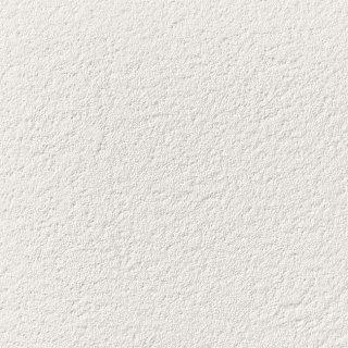 【のり無し】 SP-2831 サンゲツ 壁紙/クロス