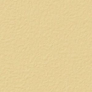 【のり無し】 BW-4704 サンゲツ 壁紙/クロス
